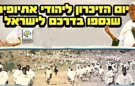 ברקו זרו: הגיבורים האמתיים לעומת האתיופי הראשון