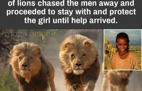 ילדה בת 12 נחטפה ועונתה וניצלה בזכות אריות